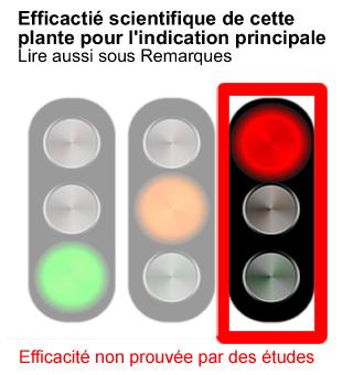 efficacite-plante-medicinale-prouvee-rouge