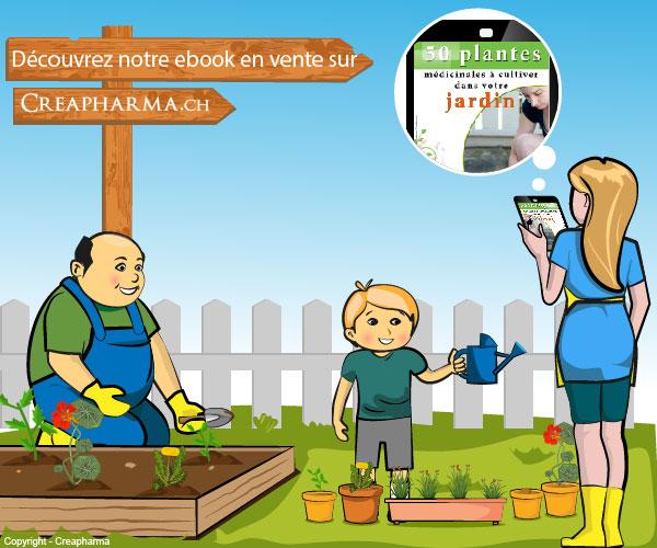 infographie-ebook-50plantes-01-01