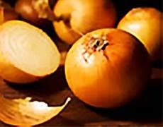 Oignon - Plante médicinale