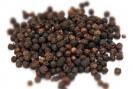 Poivre noir plante médicinale Inde