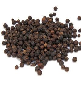 Poivre noir - Plante médicinale