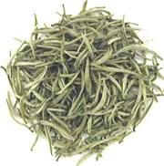 thé blanc - Plante médicinale