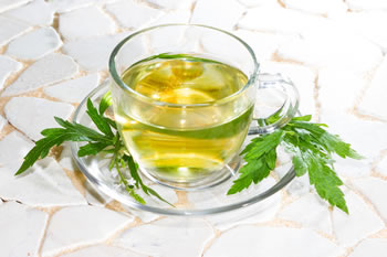 Verveine officinale - Tisane