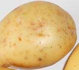 Jus de pomme de terre