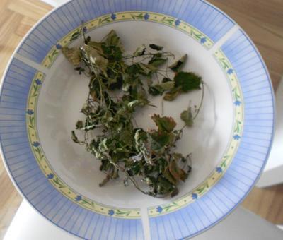 3-melisse-feuilles-sechees