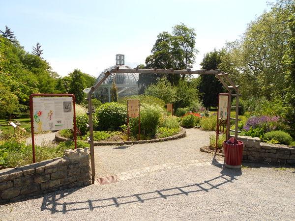 Jardin botanique de gen ve suisse creapharma for Jardin botanique geneve