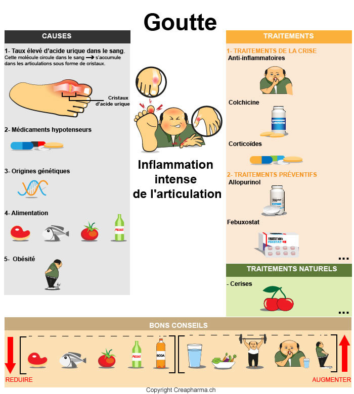 goutte-resume-infographie
