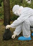 grippe aviaire définition