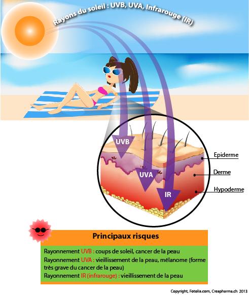 soleil et peau infographie