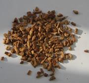 Tisane de galanga (infusion de galanga)