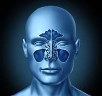 Résumé sur la sinusite
