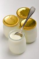 yaourt prévention diabète de type 2