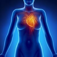 L'exercice, la meilleure chose que les femmes peuvent faire pour leur coeur