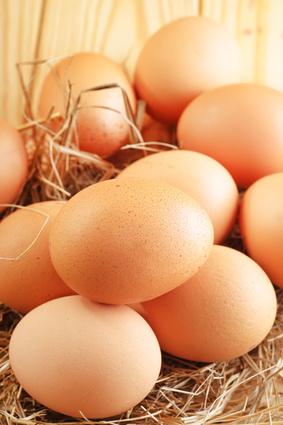 Ne manquez pas le petit déjeuner et mangez des œufs