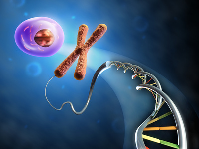 Aspect biologique ADN